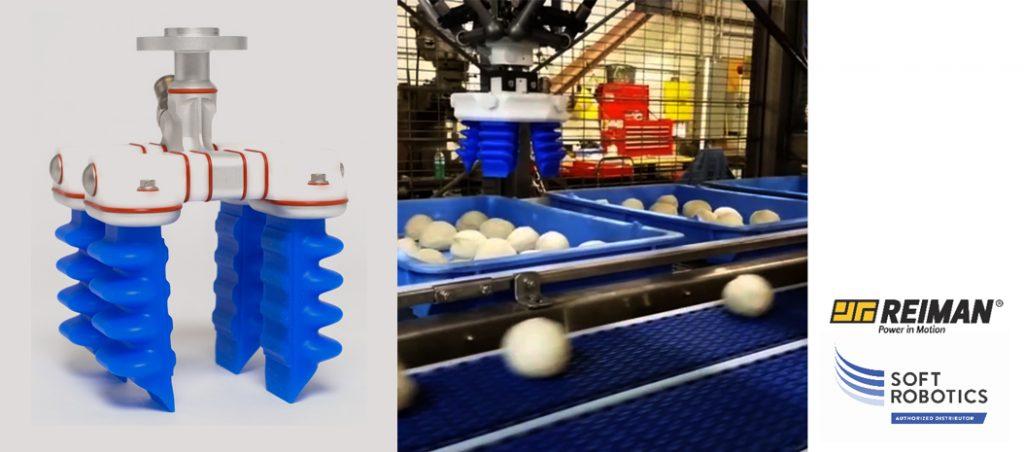 REIMAN: Soft Robotics propõe otimização produtiva com marca CE